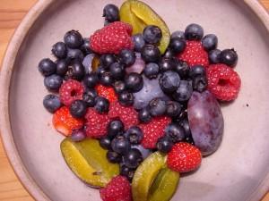Früchte des Gartens